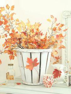 Fall foliage via Abbey Carpet SF