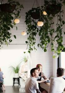 Indoor Plants via Abbey Carpet of SF